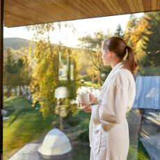 Viktoria Alpine Spa Resort ****s
